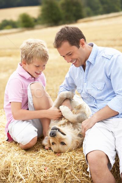 Сток-фото: отцом · сына · сидят · собака · соломы · семьи · человека