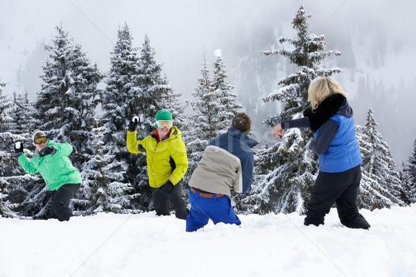 Gruppo giovani amici palla di neve lotta sci Foto d'archivio © monkey_business