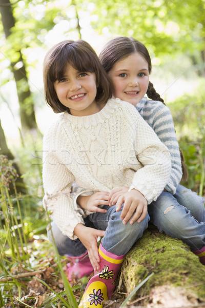 Dos hermanas aire libre bosques sesión sonriendo Foto stock © monkey_business