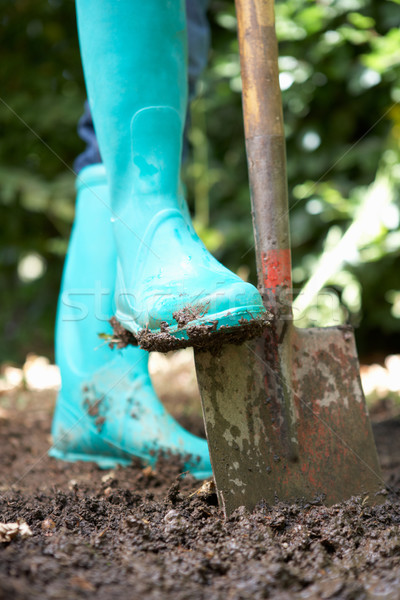 Person digging in garden Stock photo © monkey_business
