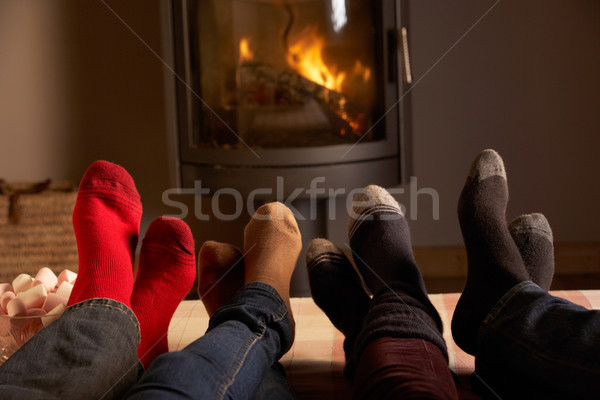 Close Up Of Familys Feet Relaxing By Cosy Log Fire With Marshmal Stock photo © monkey_business