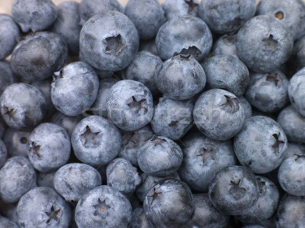 Fresh Blueberries Stock photo © monkey_business