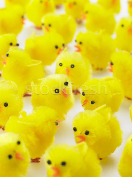 Abundancia Pascua pollitos grupo animales Chick Foto stock © monkey_business