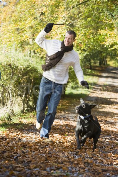 Man exercising dog in woodland Stock photo © monkey_business