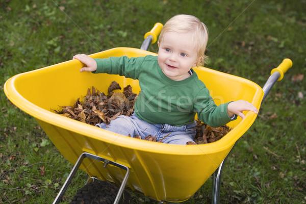 équitation brouette enfant jardin Photo stock © monkey_business