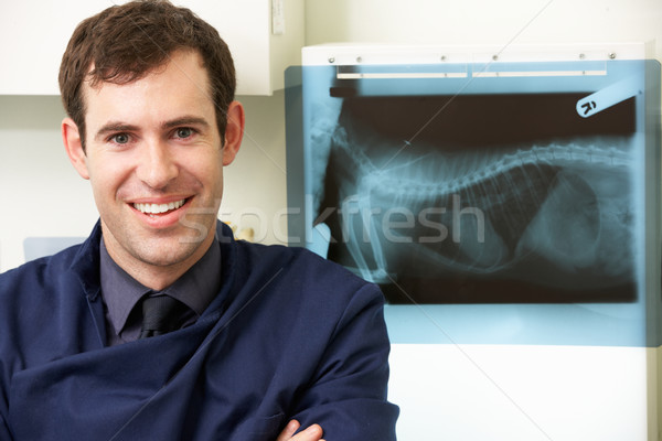 Male Veterinary Surgeon Examining X Ray In Surgery Stock photo © monkey_business