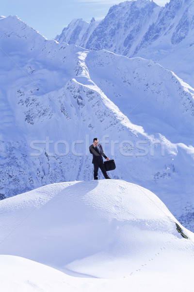 Businessman outdoors on snowy mountain using cellular phone Stock photo © monkey_business