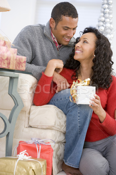 Husband And Wife Affectionately Exchanging Christmas Gifts Stock photo © monkey_business