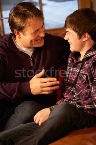 Stockfoto: Portret · vader · zoon · ontspannen · sofa · samen · familie