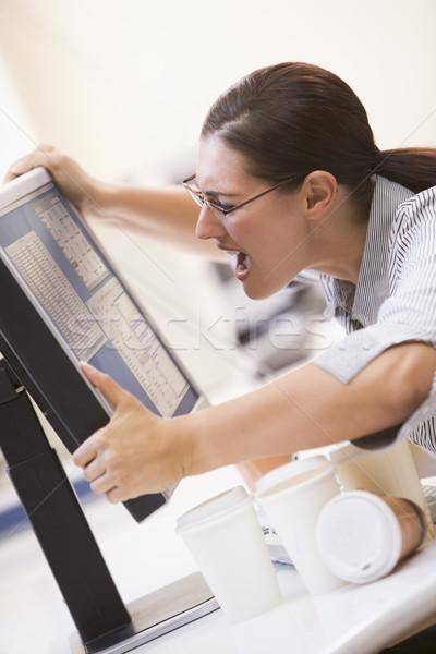 Woman in computer room grabbing her monitor and screaming Stock photo © monkey_business