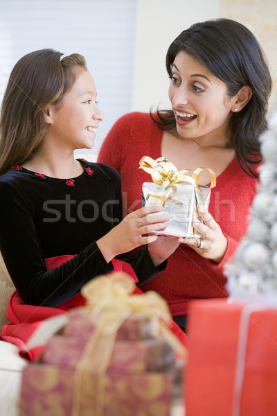 Girl Surprising Her Mother With Christmas Gift Stock photo © monkey_business