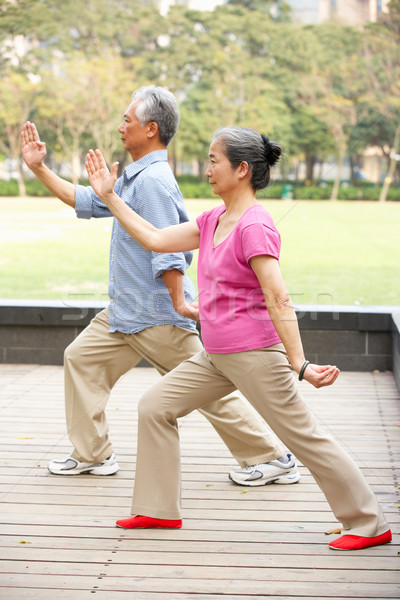 Senior Chinese Couple Doing Tai Chi In Park Stock photo © monkey_business