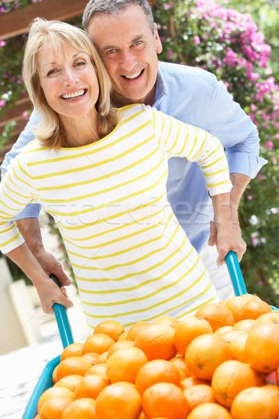 ストックフォト: プッシング · 手押し車 · オレンジ · 女性 · 幸せ