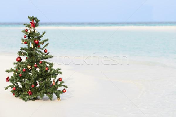Foto stock: árvore · de · natal · belo · praia · tropical · praia · mar · areia