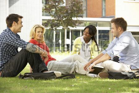 Stockfoto: College · studenten · vergadering · praten · campus · gazon