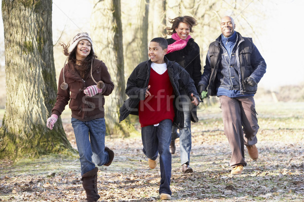 Family Running Through Autumn Countryside Stock photo © monkey_business