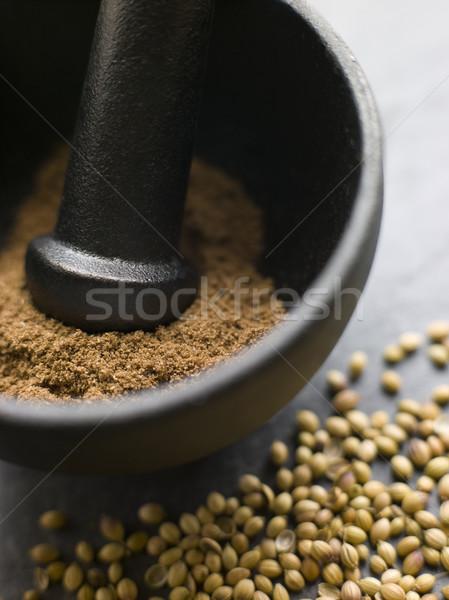 Kişniş toz tohumları iç otlar Stok fotoğraf © monkey_business