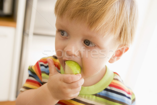 Young boy eating apple indoors Stock photo © monkey_business