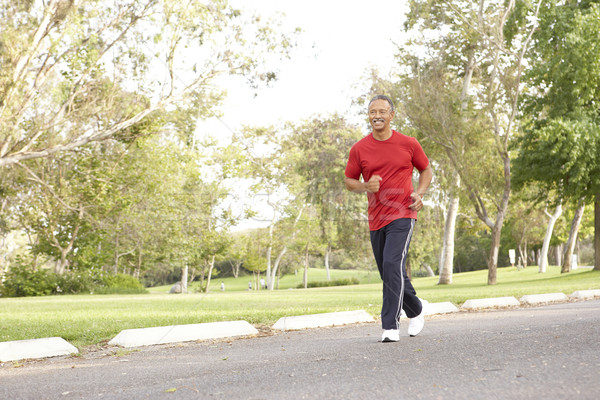 Zdjęcia stock: Starszy · człowiek · jogging · parku · szczęśliwy · uruchomiony