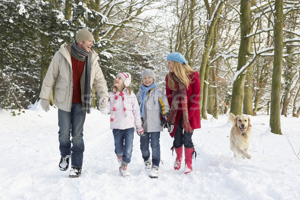 Family Walking Dog Through Snowy Woodland Stock photo © monkey_business