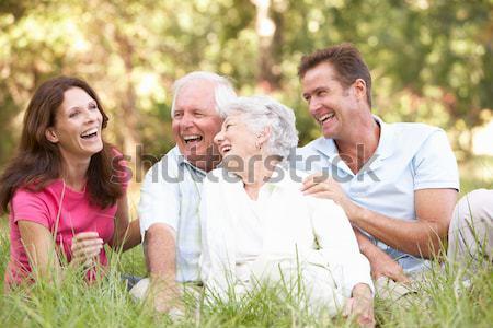 Nagyapa leányunoka buborékfújás család piknik mosoly Stock fotó © monkey_business