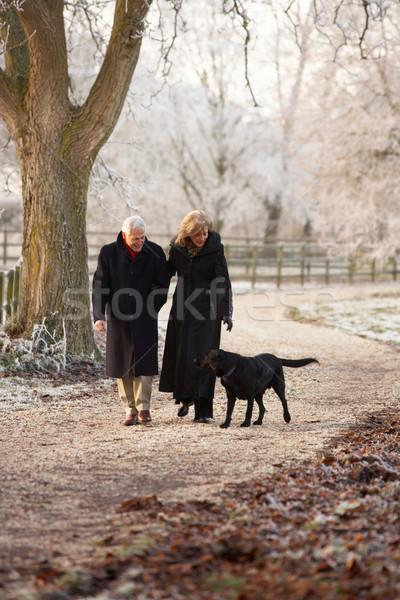 Starszy para zimą chodzić psa mroźny krajobraz Zdjęcia stock © monkey_business