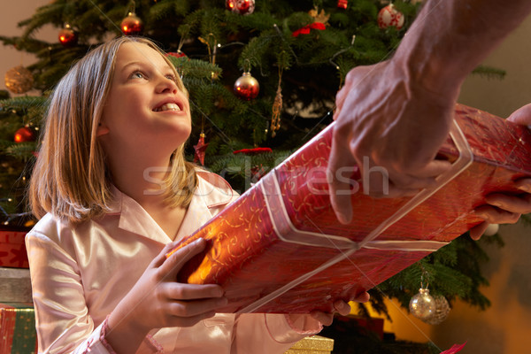 Young Girl Receiving Christmas Present In Front Of Tree Stock photo © monkey_business
