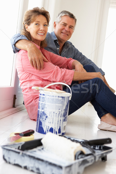 Senior couple decorating house Stock photo © monkey_business