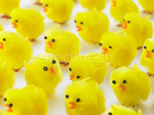 Abundance Of Easter Chicks Stock photo © monkey_business