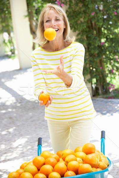 Kıdemli kadın hokkabazlık portakal el arabası kadın Stok fotoğraf © monkey_business