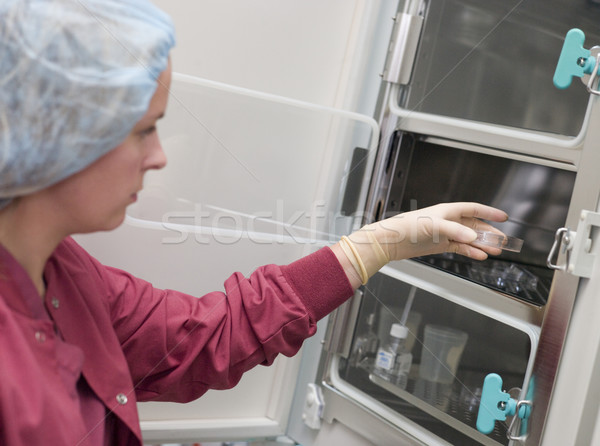 Embryologist putting sample into incubator Stock photo © monkey_business