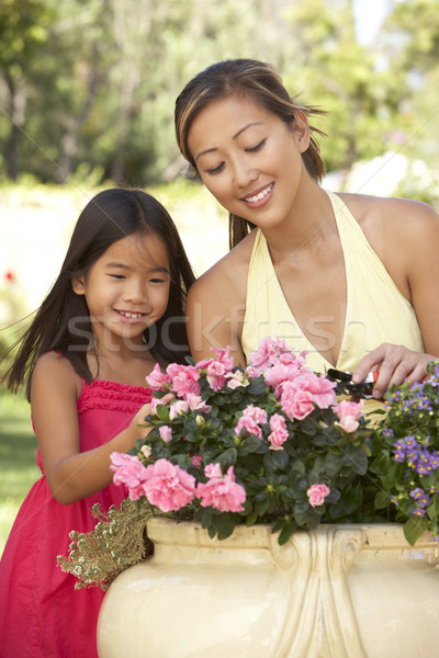 Mother And Daughter Gardening Together Stock photo © monkey_business