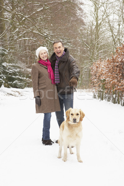 Senior Couple Walking Dog Through Snowy Woodland Stock photo © monkey_business