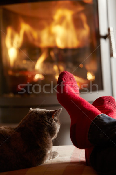 Close Up Of Mans Feet Relaxing By Cosy Log Fire With Cat Stock photo © monkey_business
