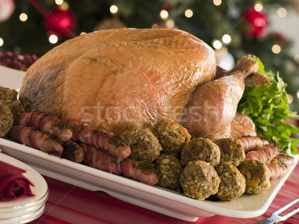 Traditional Roast Turkey with Trimmings Stock photo © monkey_business