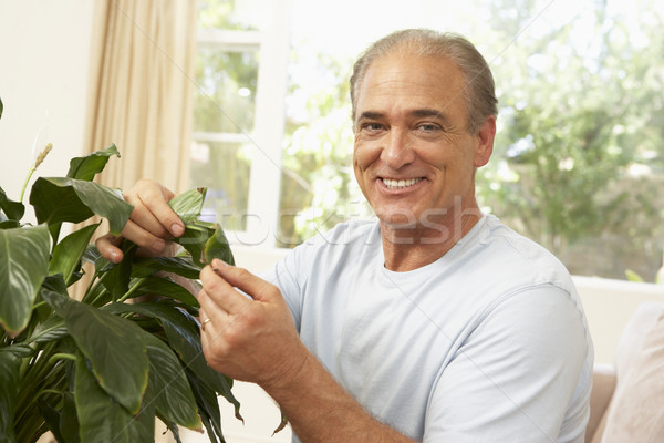 Senior Man At Home Looking After Houseplant Stock photo © monkey_business