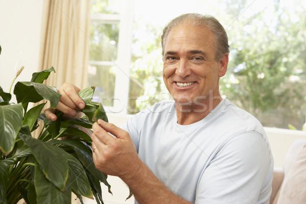 Idős férfi otthon néz boldog nappali Stock fotó © monkey_business
