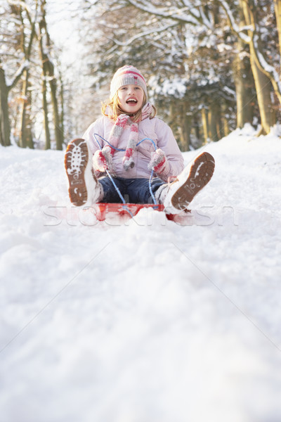 Girl Sledging Through Snowy Woodland Stock photo © monkey_business
