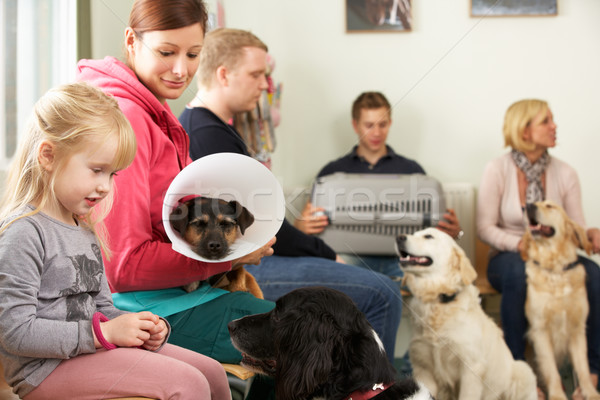 Busy Waiting Room In Veterinary Surgery Stock photo © monkey_business
