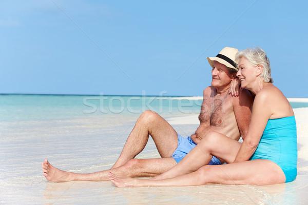 Idős pár élvezi tengerparti nyaralás szeretet nyár férfiak Stock fotó © monkey_business