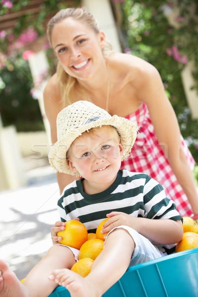 Moeder voortvarend zoon kruiwagen sinaasappelen vrouwen Stockfoto © monkey_business