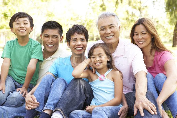 Portrait Of Extended Family Group In Park Stock photo © monkey_business
