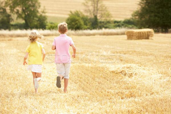 Children Running Through Summer Harvested Field Stock photo © monkey_business