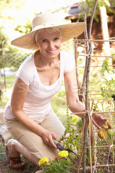 старший женщину расслабляющая саду счастливым человек Сток-фото © monkey_business