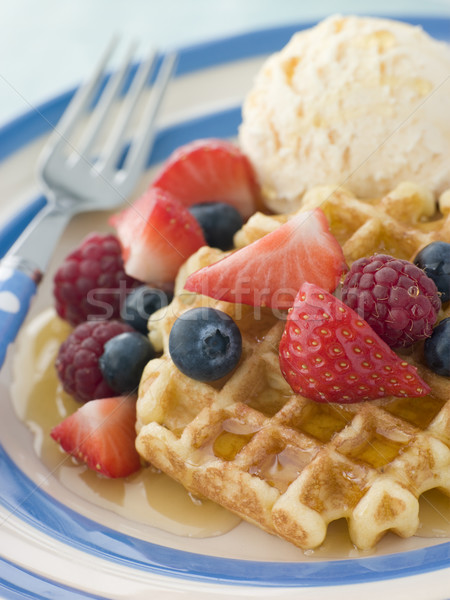 Sweet Waffles with Berries Ice Cream and Syrup Stock photo © monkey_business