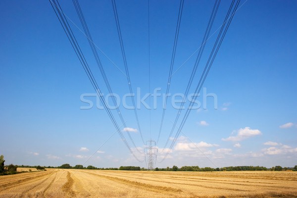 Electricity pylon and lines in countryside Stock photo © monkey_business