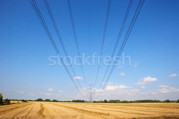 Eletricidade linhas campo blue sky país Foto stock © monkey_business