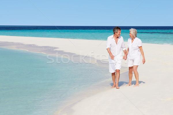 Idős romantikus pár sétál gyönyörű trópusi tengerpart Stock fotó © monkey_business