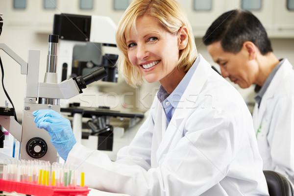 ストックフォト: 男性 · 女性 · 科学者 · 室 · 女性 · 作業