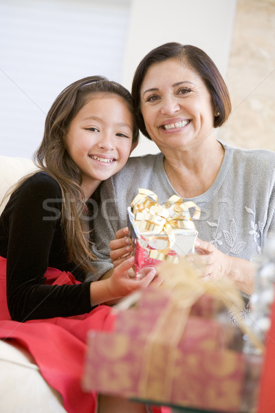 Stockfoto: Grootmoeder · kleindochter · vergadering · sofa · familie